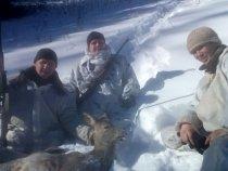 трудовая охота 2015 Горный Алтай