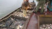 Рейды на браконьеров! Рекордный улов в одну тонну.