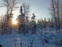 Северный рассвет.