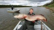 Ловля судака, щуки и окуня осенью! Необычная рыбалка.