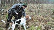 Натаска гончих собак! Опытные охотники. Из цикла  Охотничьи истории 
