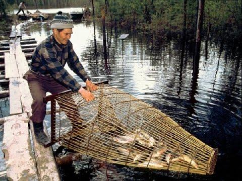 видео новые способы ловли рыбы