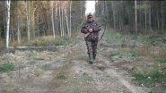 Охота на рябчика с русским охотничьим спаниелем