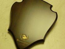 Медальон под рога лося с лобной костью