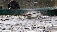 Дедовский метод рыбалки на Пескаря. Рыбалка из прошлого!