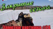 Закрытие зимнего сезона 2016-2017. Охота на рябчика, зайца, тетерева