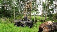 Охота на Медведя с лабаза. Привада на крупного хищника.