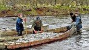 Рыбный промысел в глубинке!Забытые народы!