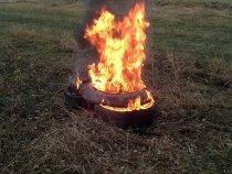 Сжигаем найденую сохшую лису