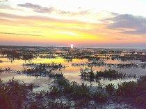 Озеро восход ,жду уток .