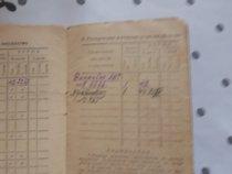 Номер винтовки моего деда