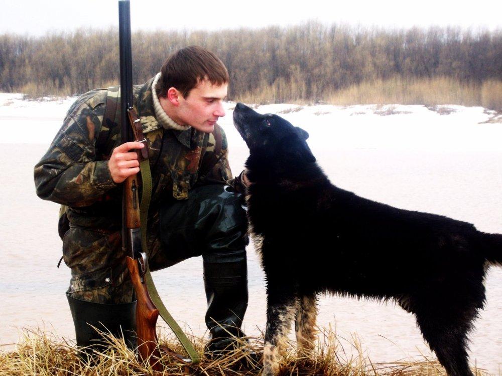 Собака как друг и собеседник на охоте.