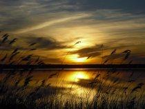 Красота да и только вечерняя заря на моей озере .