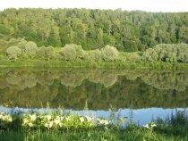 Река, зеркало природы