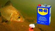 WD-40 для рыбалке! 000% РАЗВОД!!! Подводное видео