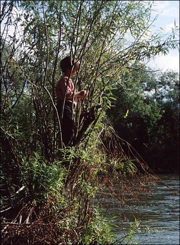 Урок джиговой ловли в кустах
