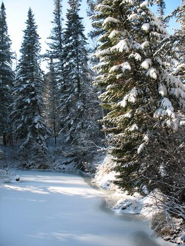 зимняя таежная сказака 2