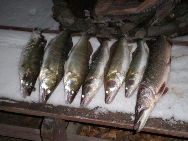 Закрытие сезона открыто воды 2007