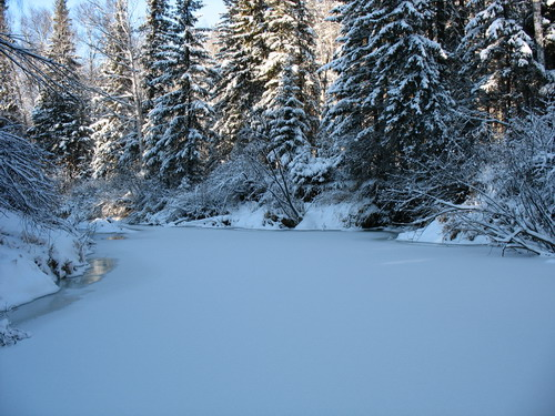зимняя таежная сказака 4