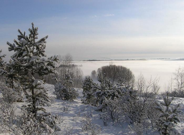 Туман над рекою