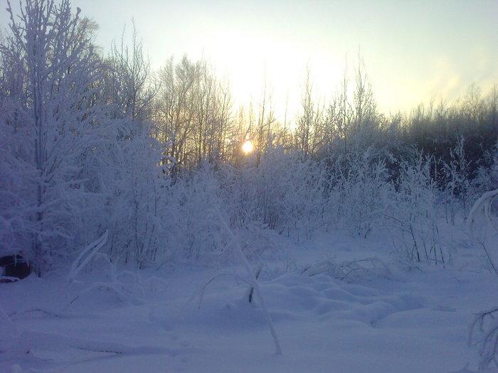 Короткий зимний день