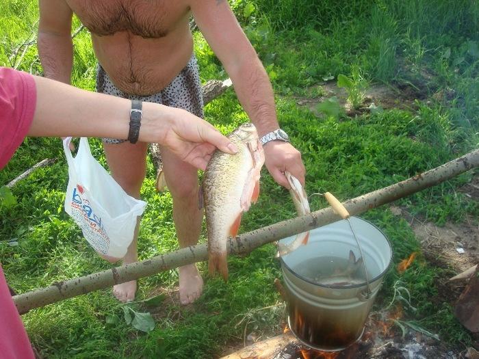Вспомним лето-подъязки с Кротова