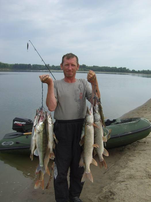 Пщймано за 4 часа. Способ поиска рыбы- троллинг, рыблка- джиг.