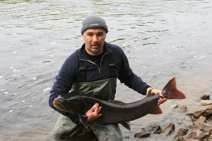 Таймень, 115 см, река Уда, июнь 2009. Отпущен.