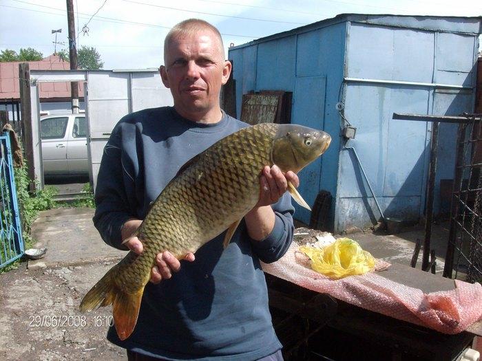С Новым годом братья-рыбали!Хочу пожелать вам в 2010 году УДАЧИ! Будьте добрее и она ответит вам тем же!Будующих рекордных трофеев!!!
