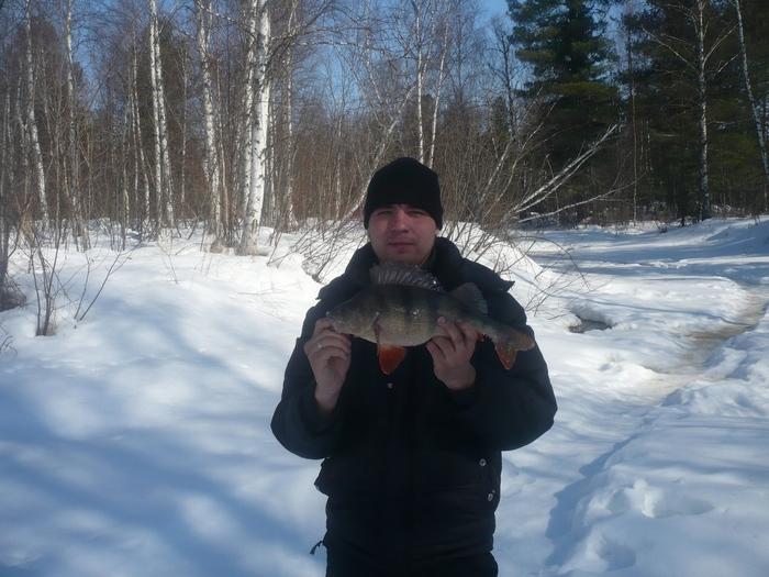 А это мой любимый братик Дениска. Он поймал окуня больше чем папа.