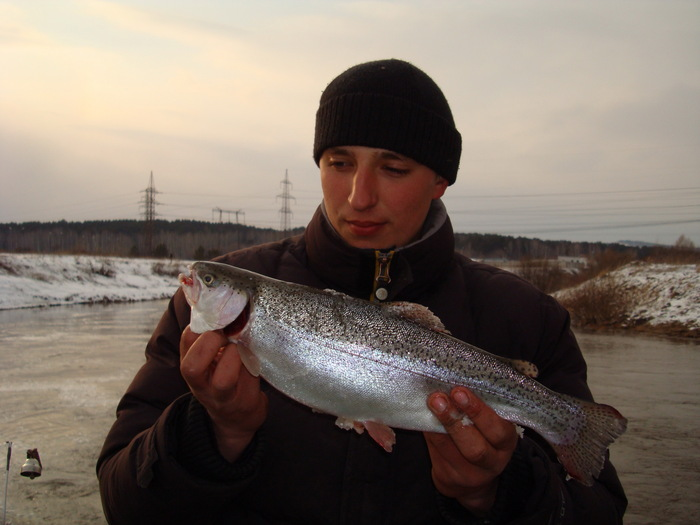Серебро канала. 2008 год