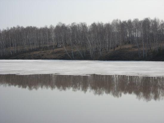 последний лёд на пруду Шипунихи