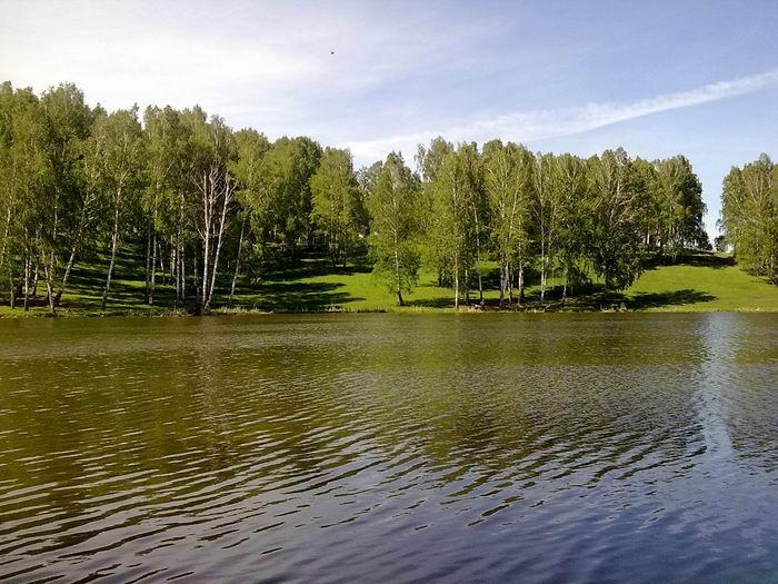 Деревенский пруд (Раздольное)