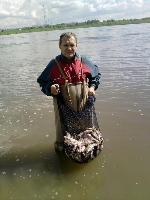больше 30 кг....кантарь сказал что сами такое взвешивайте :)