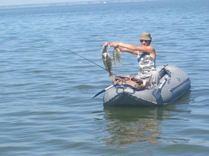 Супер рыбак  Vic. Один из окуней - 1030гр, другой - 1070 гр. Правую руку под козырёк!