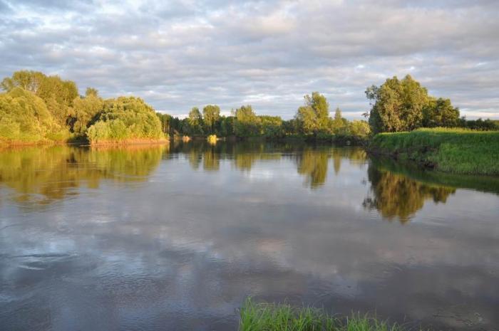 Течёт река...