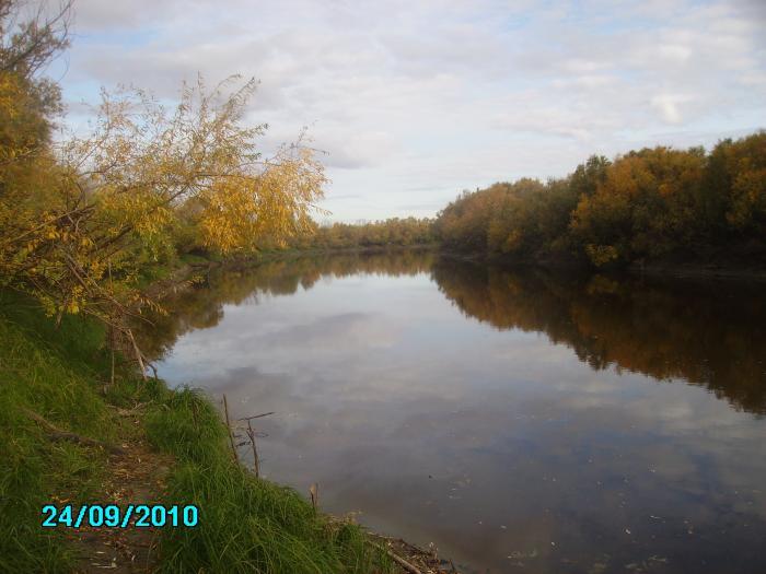 Река Омь (Куйбышевский район)