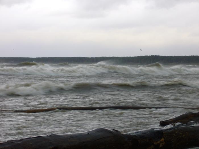 Вот такое сегодня Обское море