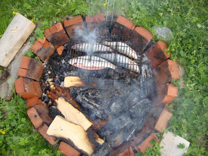 микижа на углях