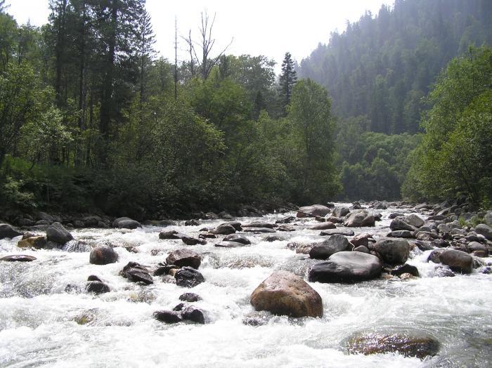 Речка Солзан. В низине хребта Хамар-Дабан.