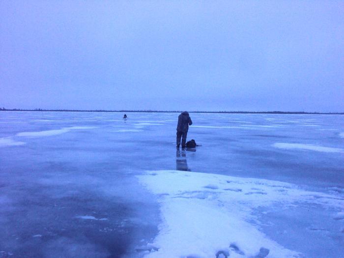 14 ноября. Чем порадует первый лёд?
