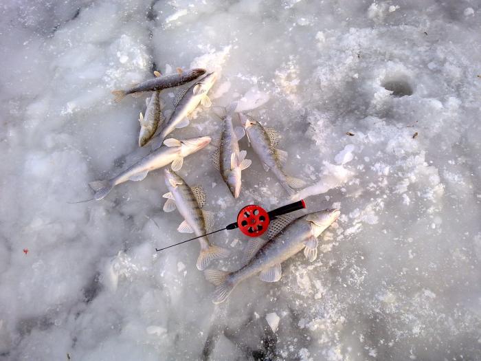 первый лёд.