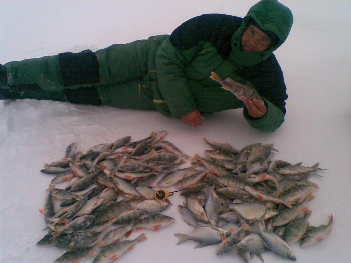 Сегодня.Барнаул. Вся рыба с глубины 9-11 метров