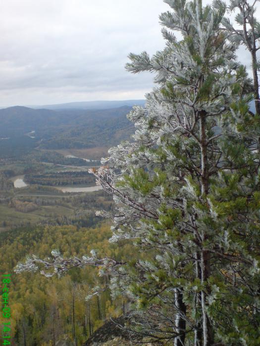 с.Турочак...вид с горы САЛОП.