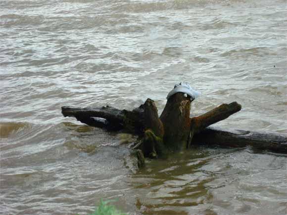 Крокодил и водяной (Каракан)