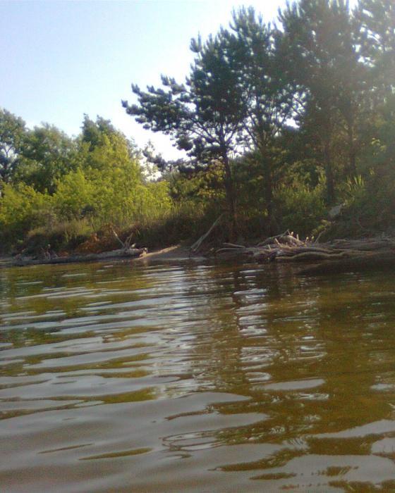 мои любимые места лова летом