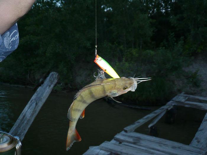 Бердкий залив Открытие рыбалки