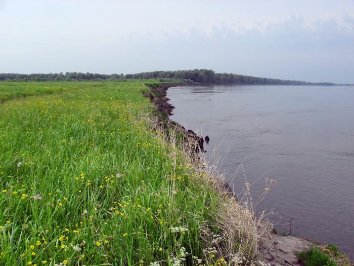 КАК РАБОТАЕТ НАША РЕКА 1 (ровный поворот реки)