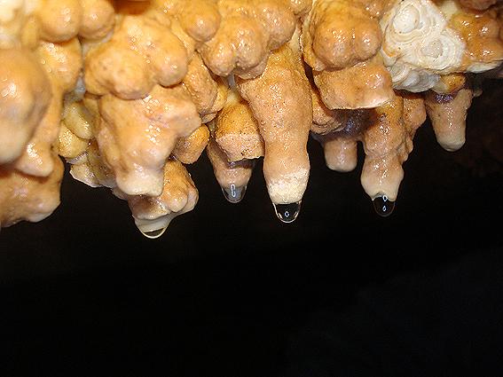 Рождение сталактита
