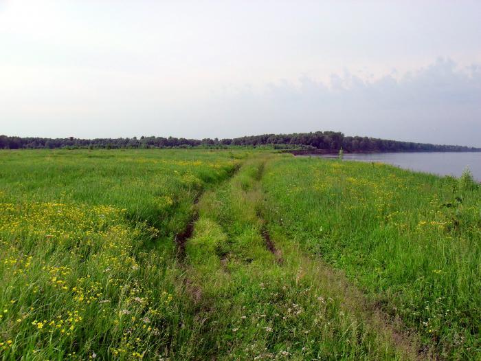 КАК РАБОТАЕТ НАША РЕКА 2 (дорожка вдоль берега)